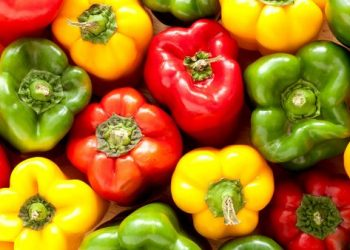 From losing weight to increasing immunity, these are the 5 benefits of consuming capsicum