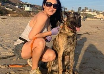 Actress Preity Zinta hits the beach with pet after 104 days