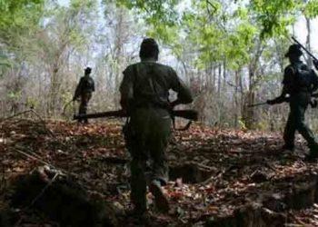 Maoist camp busted in Koraput