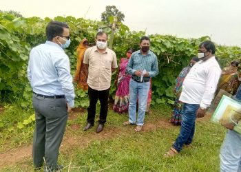 Mayurbhanj women script success story in vegetable cultivation