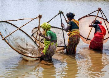 Women risk lives fishing in croc-infested rivers