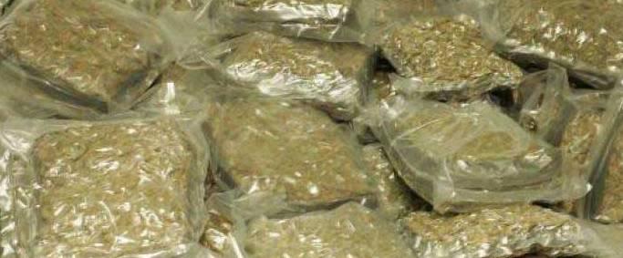 800kg ganja seized in Koraput district, two arrested