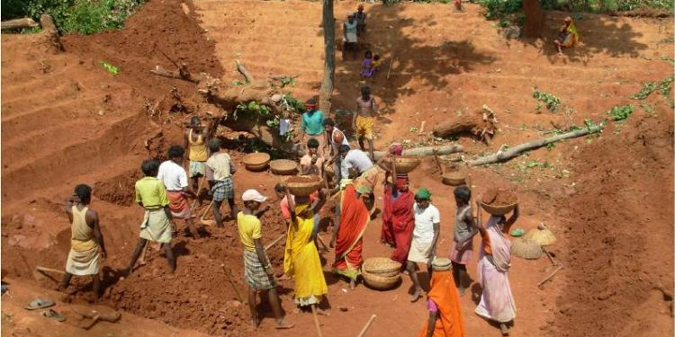 MGNREGS faces fund crunch in Sambalpur