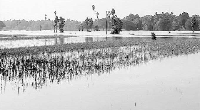 Normalcy eludes flood-hit Bari block in Jajpur district