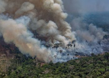 (Image courtesy: ABC News)