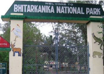 Bhitarkanika National Park in Odisha reopens for tourists
