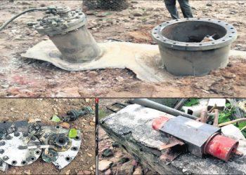 Deer from Raj Bhavan park dies under impact of Bhubaneswar filing centre explosion