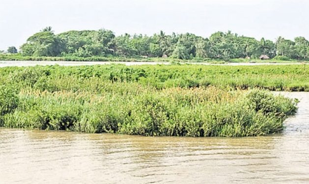 Fate of Odisha's first riverine port proposed in Kendrapara district hangs in balance