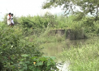 Andhra chokes Mahendratanya's water flow to Odisha