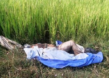Man's decomposed body found wrapped in polythene sheet in Cuttack