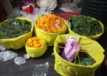 Subarnapur Basil leaves, flowers sent for Nagarjuna Besha