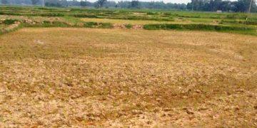 Big money spent, Udaysagar is no use for farmers