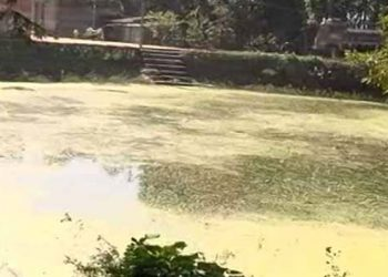 Pari death case Drying up of pond where Pari's skeletal remains were found started