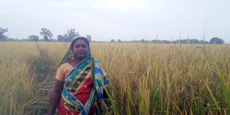 This female organic farmer leads the way