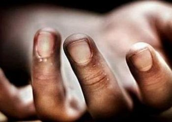 9-year-old girl's mutilated body recovered from jungle in Bargarh