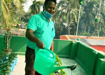 Engineer-turned-farmer scripts success story in Odisha's Jagatsinghpur district