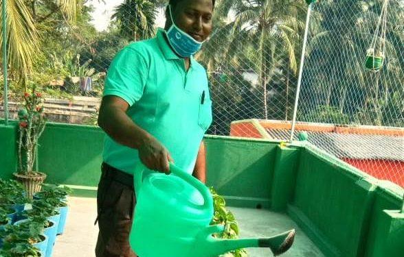 Engineer-turned-farmer scripts success story in Odisha's Jagatsinghpur district