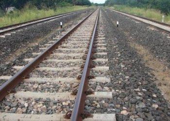 Goods train hits deer herd in Jagatsinghpur, three killed