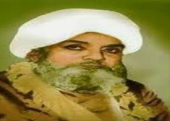 Ahmadullah Shah