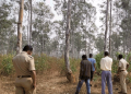 Naked headless body recovered from Patna jungle in Koenjhar district, murder suspected