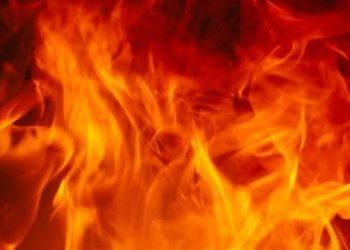 Fire breaks out at Botanical Garden near Nandankanan