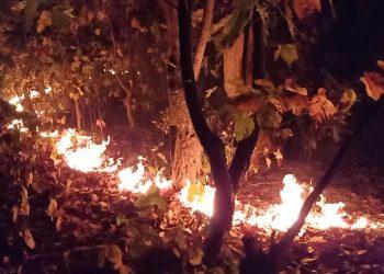 Similipal fire