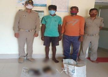 Migratory bird hunter arrested in Khurda, seven bird carcasses recovered