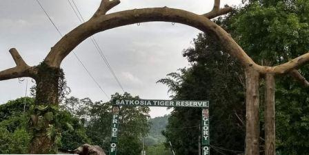 Move to turn Satkosia into tiger conservation project hits roadblock