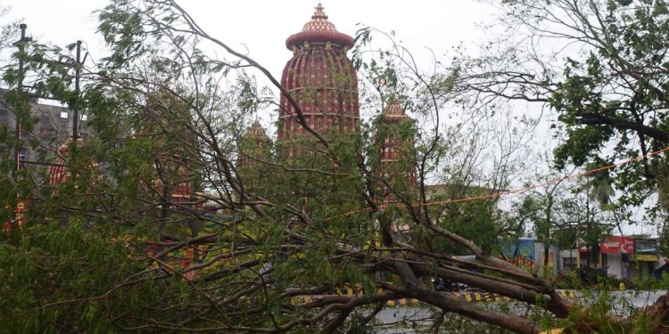 Remembering 'Cyclone Fani' with a tinge of fear