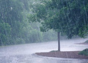 Yaas effect Rains start in a number of districts