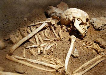 Skeleton. Pic- IANS