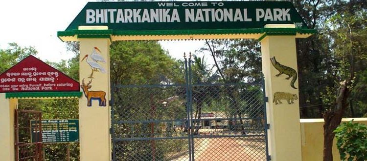 Bhitarkanika National Park to reopen from August 5