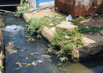 Dengue spreads in Jagatsinghpur