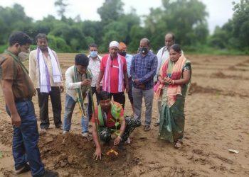 Hort department's work bears fruits in Rasulpur