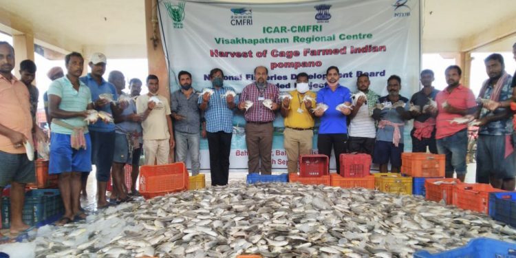 Flood plays spoilsport for cage fish farming in Balasore